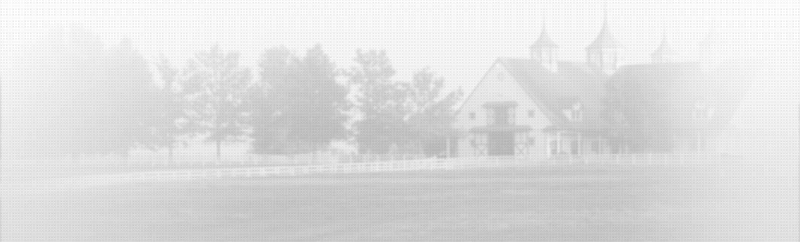 Services - Animaux de la ferme & équins - Hôpital vétérinaire de Sherbrooke